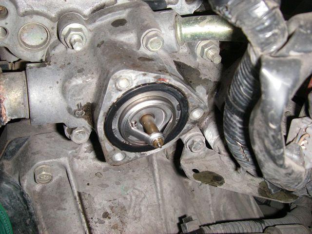 Термостат двигателя
