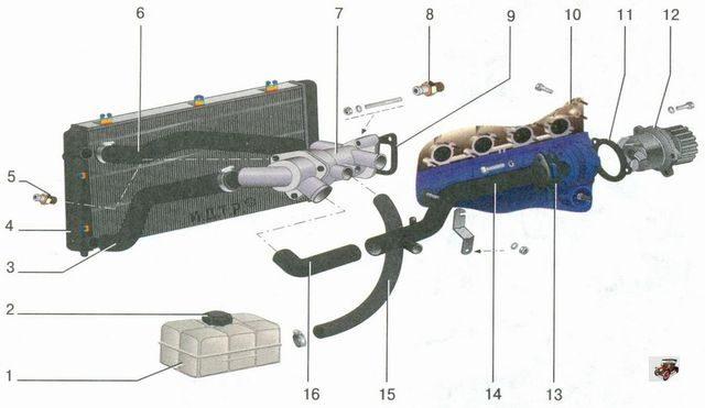 Схема циркуляции ОЖ