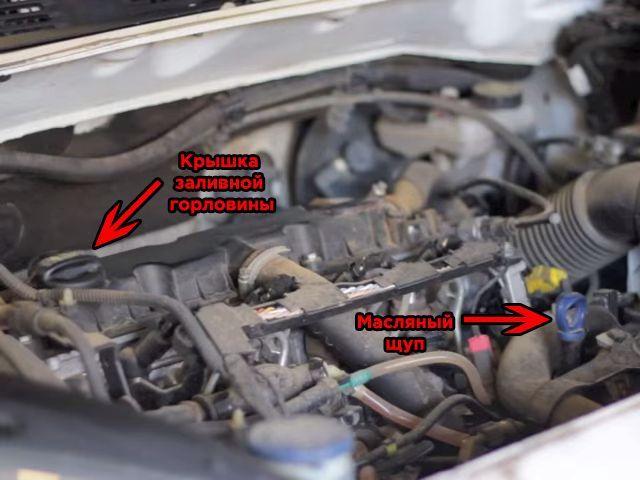 Расположение элементов замены масла Citroen Berlingo